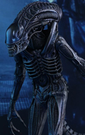 Aliens - Alien Warrior
