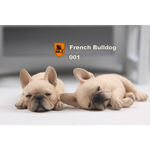 Set chiens French Bulldog (Beige)