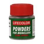 Rotten Plant Texture Powder (Green)