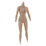 Caucasian Female Body
