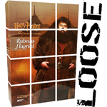 Harry Potter - Rubeus Hagrid (Standard Version)