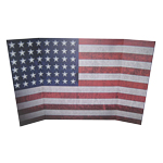 US flag Diorama Background