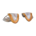 Epaulettes en métal (Argent)