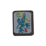 Seal Team 3 Skeleton Frog Patch