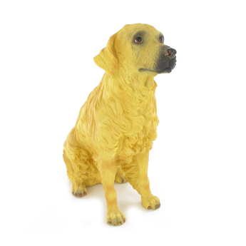 Grand chien Golden Retriever