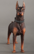 Chien Doberman Pinscher (Marron)