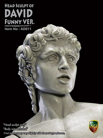 Headsculpt David (Funny Version)