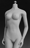 Caucasian Seamless Female Body (Middle Bust)