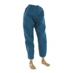 Pants (Blue)
