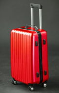 Travel Case (Red)