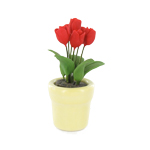 Tulipes rouges dans pot