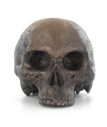 Headsculpt brown skull