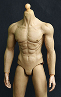 Asian Muscle Body (Damaged)