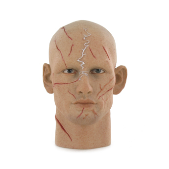 Headsculpt Alex Pettyfer