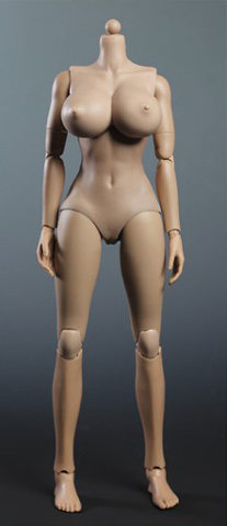 Play toy female body sorry, that