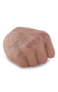 Caucasian Male Right Hand (Type A)