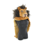 Male Lion Skin & Lion Head