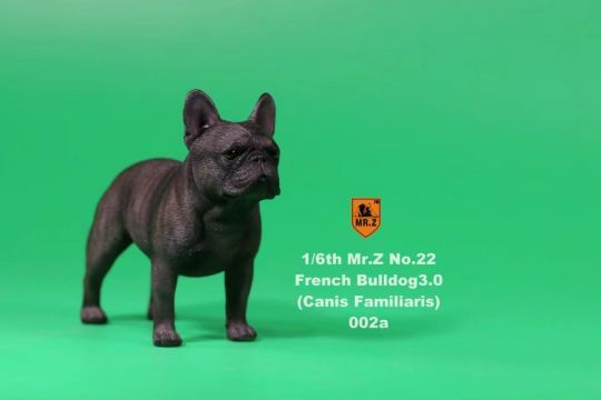 Set chiens French Bulldog 3.0 (Noir)