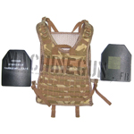 Plate carrier w/ hard plates