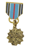 Diecast Joint Service Achievement Medal (Gold)
