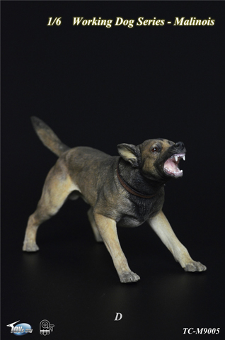 Working Dog Series - Chien Malinois (Beige)
