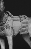 Working Dog Series - Veste tactique pour chien (Olive Drab)