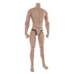 Roman Centurion body