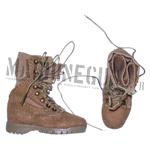 Danner's desert boots