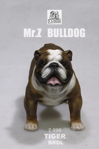 Chien Bulldog anglais Tiger (Marron)