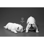Set chiens British Bulldog (Blanc)