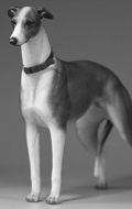 Greyhound Dog (Brown)