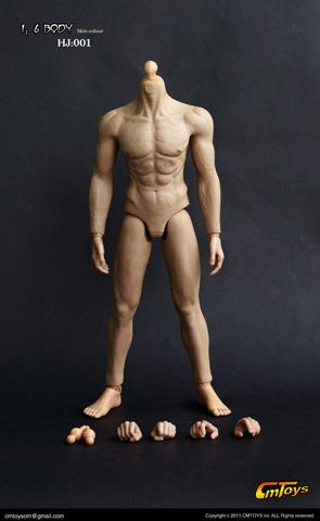 Caucasian Muscle Body (headless version)