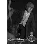figurine Lord Of The Rings - Merry (Slim Version)
