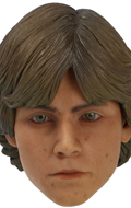 Headsculpt Mark Hamill