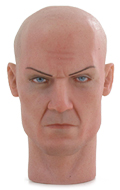 Hitman Headsculpt