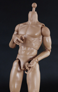 Caucasian Male Body (25cm)