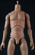 Caucasian Male 1/4 Body-HD
