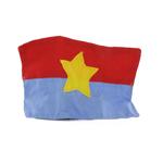 Viet Cong battle flag