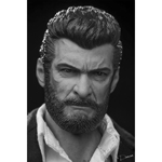 Headsculpt Logan