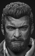 Logan Headsculpt (Injured Version)