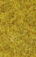 Dried Plant Texture Powder (Yellow)