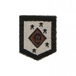 Patch Marine Raiders MARSOC MSOT (Beige)