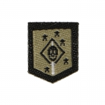 Marine Raiders MARSOC MSOT Patch (Khaki)