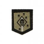 Patch Marine Raiders MARSOC MSOT (Kaki)