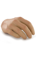 Hispanic Male Right Hand