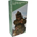 31st Marine Expeditionary Unit - Maritime Raid Force VBSS