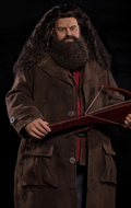 Harry Potter - Rubeus Hagrid (Special Version)