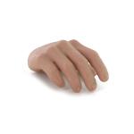 Main droite (Type A)