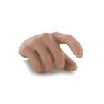Main droite (Type B)