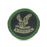 CIRG 1 patch